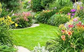 Как правильно расположить растения и цветы