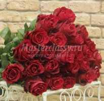 Как правильно ухаживать за срезанными розами