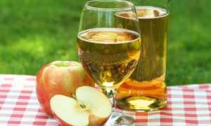 Сорт яблок горький омлет