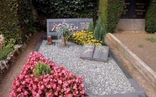 Какие многолетние цветы лучше сажать на кладбище
