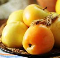 Сорта яблок для мочки
