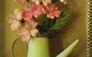 Как сделать полив комнатных цветов при длительном выезде из дома