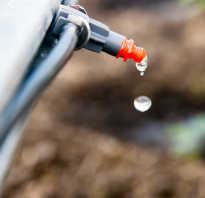 Как сделать систему капельного полива своими руками для комнатных растений
