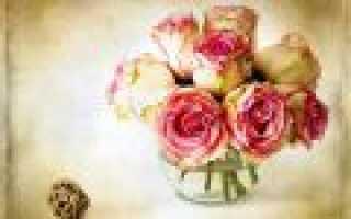 Какого цвета бывают розы варианты окраски