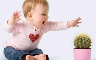 Какие комнатные растения опасны для детей