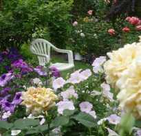 Вертикальный цветникрозарий в саду с фото