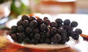 Как сохранить урожай винограда в домашних условиях
