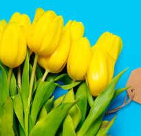 10 причин купить цветы