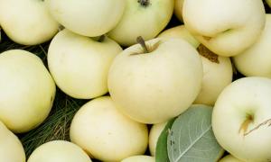 Пресные яблоки сорта