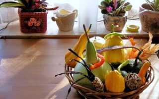 Какие цветы подходят для кухни
