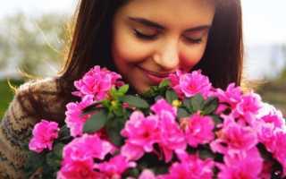 Какие цветы вкусно пахнут